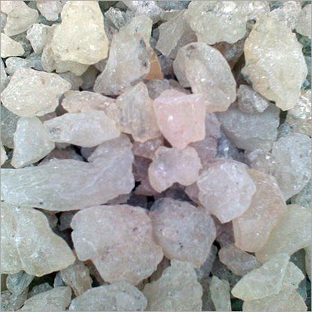 Gum Copal ( Chandras )