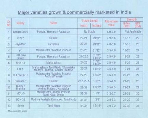 Small Cotton Varieties India