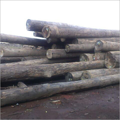 Hard Wood Timber