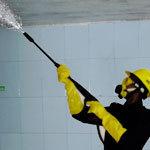 Step 6 Anti-Bacterial Spray