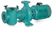 Swimming Pool Pumps