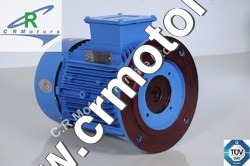 Vertical Hallow Shaft Motor