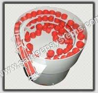 Vibrating Bowl Feeder