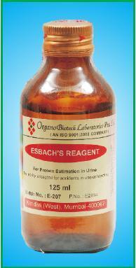 Enrlich's Reagent