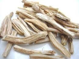 White Asparagus Racemosus Root