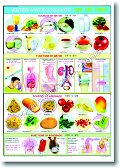 CHARTS-FOOD & NUTRITION