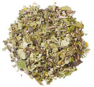 Adusa leaf Adhatoda vasica