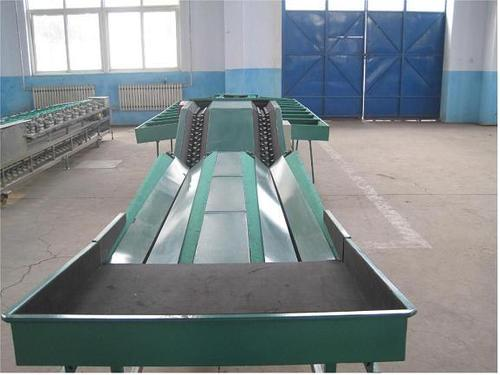 Automatic Feeding Fruit Grading Machine