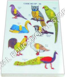 INSERT TRAY PUZZLE-BIRDSD
