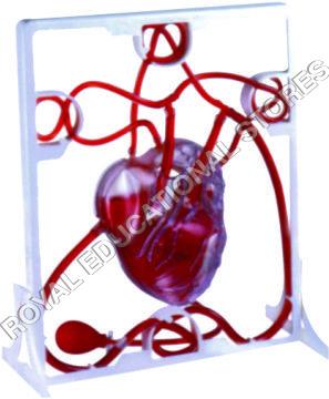 PUMPING HEART