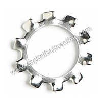 Stainless Steel Star Washers