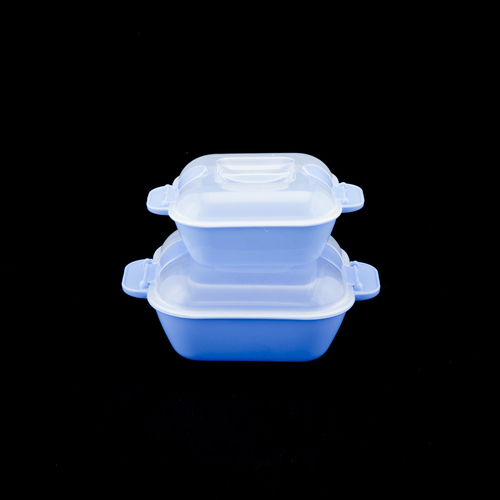 Microwavable Container Set Of 2 (500 ml + 1000 ml)