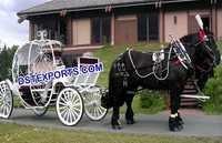 Modern Cinderala Horse Carriage