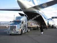Air Cargo Services