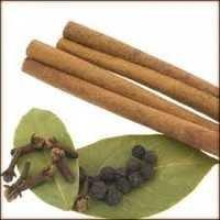 Cinnamon Bark And Leaf