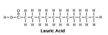 Fatty Acid Esters & Salts
