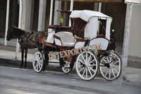 Beautiful Antique Victoria Carriage