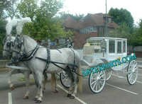 Glass Covered Victoria Horse Carriage