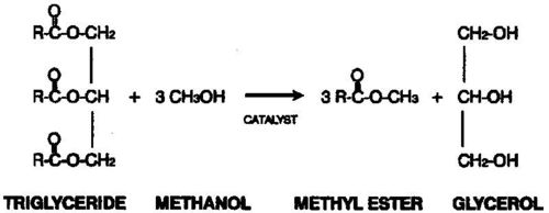 Soya Oil Methyl Ester