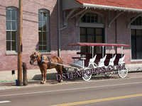 Long Touring Horse Drawn Carriage