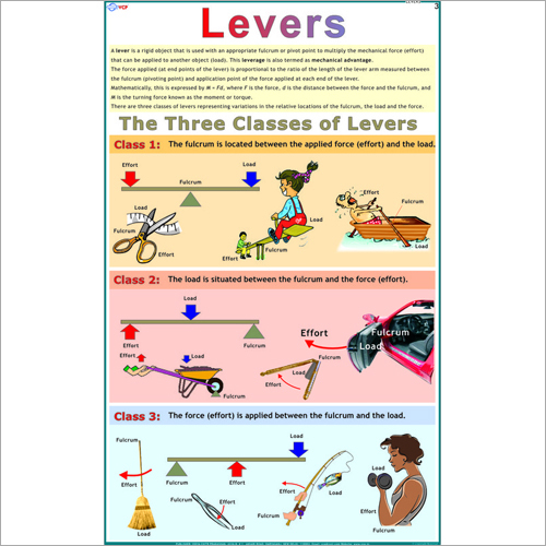 Three Kinds Of Levers Chart