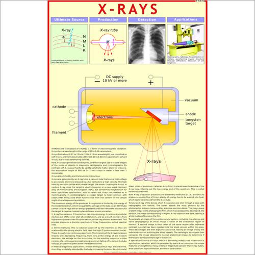 X-Rays Chart