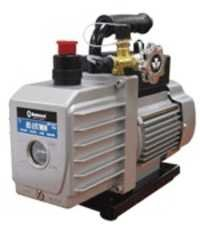 Dual Voltage Vacuum Pump