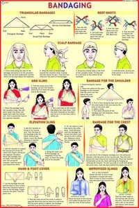 Bandaging Chart