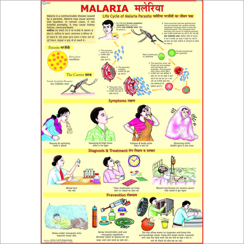Malaria Symptoms Chart