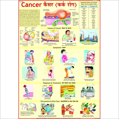 Cancer Causes Chart