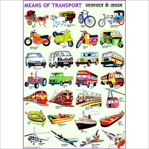 Means Of Transport Chart