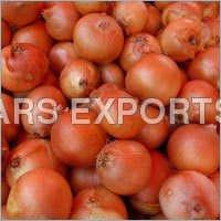 Onion Vegetables