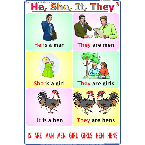 He - She - It - They English Chart