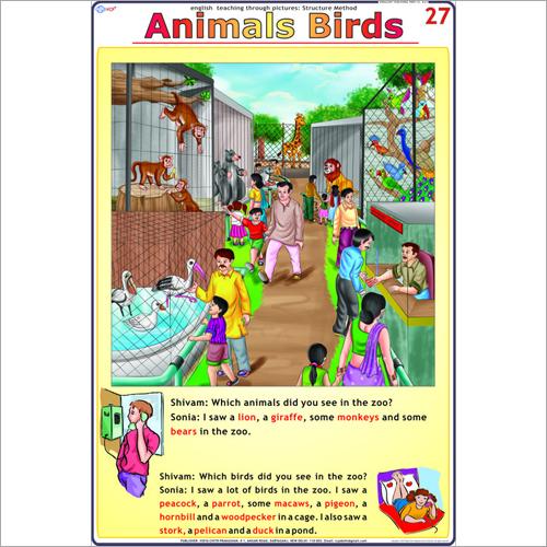 Animal - Birds Chart