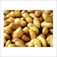Phytosanitary Certificate For Potatoes
