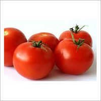 Phytosanitary Certificate For Red Tomatoes