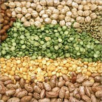 Phytosanitary Certificate For Pulses