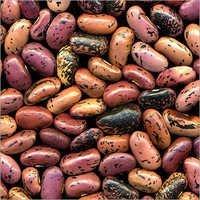 Phytosanitary Certificate For Kidney Beans