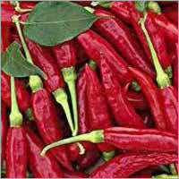 Byadgi Red Chili
