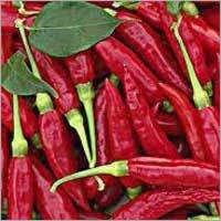Byadgi Red Chili