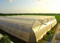 Green Houses Design And Installation