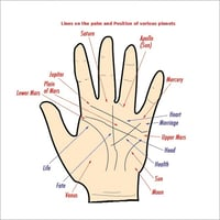 Personalized Palm Reading Services