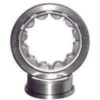 Cylindrical Roller Bearing 300
