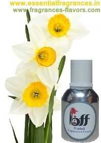 Narcissus Fragrance Oil