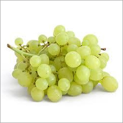 Grapes Seed Extract Capsules