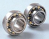 Rolling Bearings & Bearing Units