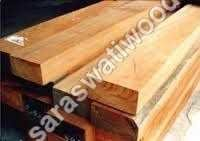 Seasoned Pine Timber