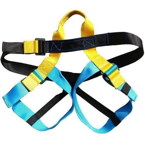 Half body harness
