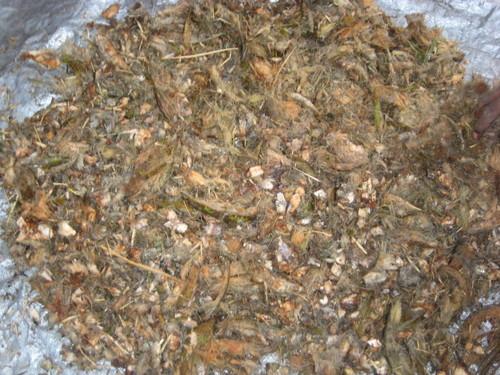 Coconut Leaves Shredder