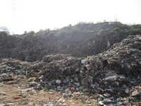 Municipal waste Shredder Machine